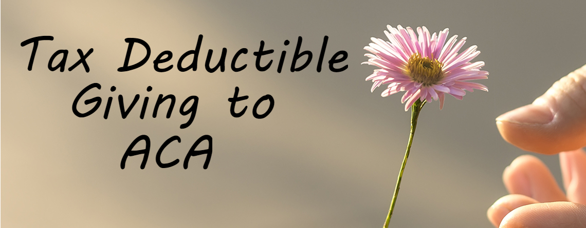 Tax Deductible Giving